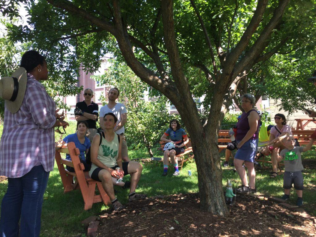 Share Food Program Orchard